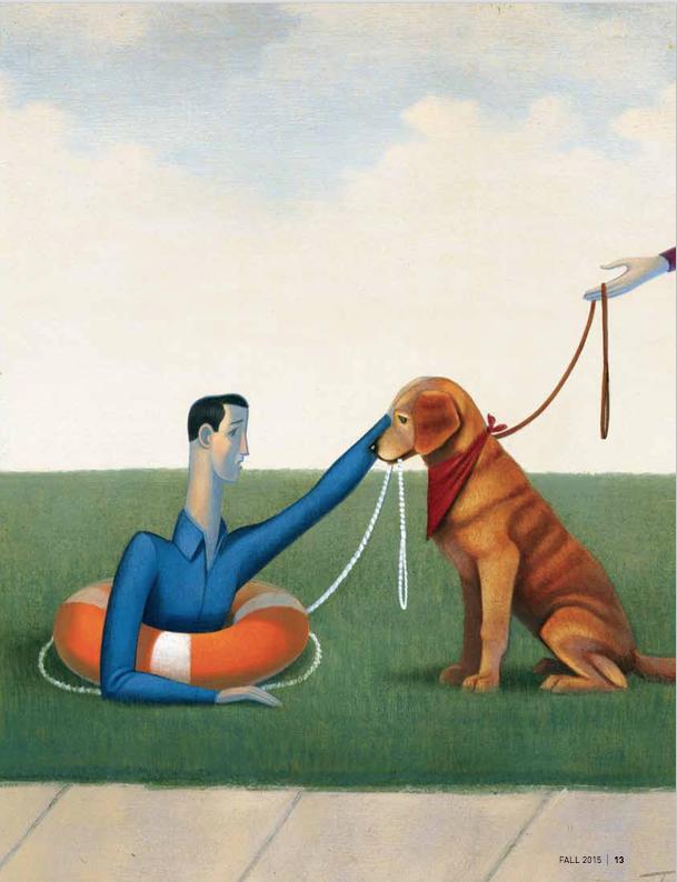Canine Comfort